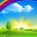rainbow님의 프로필 사진